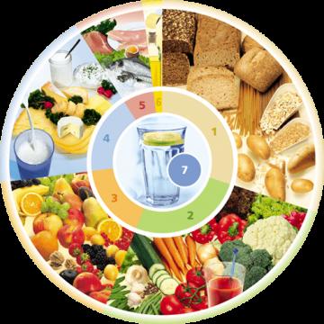 Ernährungskreis DEG